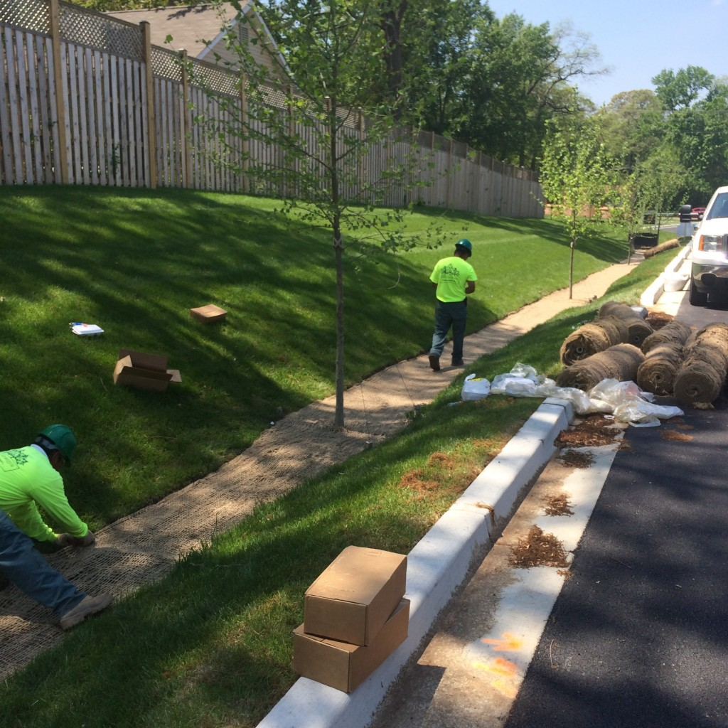services  stormwater management systems